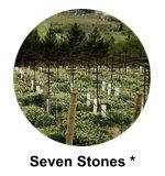 Seven Stones Winery Similkameen Wine tour