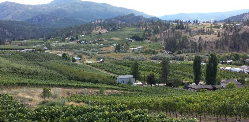 summerland wine tours