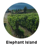 Elephant Island Winery Tour Naramata