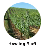 Howling Bluff Estate Winery Naramata Wine Tour