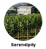 serendipity winery naramata Bench wine tours