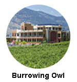 Burrowing owl wine tour oliver osoyoss