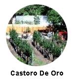 Castoro de Oro Icon Oliver Wine Tour