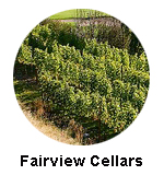 Fairview Cellars Oliver Wine Tours
