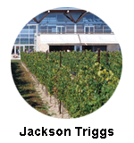 Jackson Triggs Winery Oliver BC Wine Tours