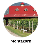 Visit Montakarn winery on Grape Escapes Wine Tours
