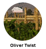 Oliver Twist Winery -visit on a Oliver wine tour