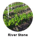 River Stone Winery -Oliver wine tours