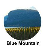 Blue Mountain Vineyard and Cellars Ok Falls Wine Tour