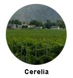 Cerelia Icon