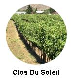 Clos du Soleil Similkameen Wine Tours