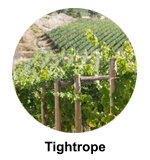 Tightrope winery Naramata Bench Wine Tours