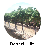 Desert Hills Winery Oliver Wine Tours