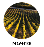 Maverick winery is on Oliver Osoyoos wine tour