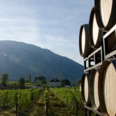 similkameen valley wine tours